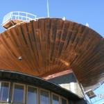 saucer underside